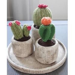 Haakpatroon 3 cactussen