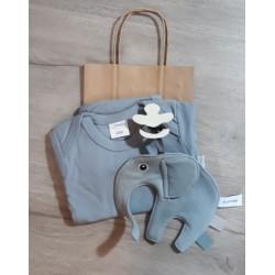 Babypakket grey/blue romper...